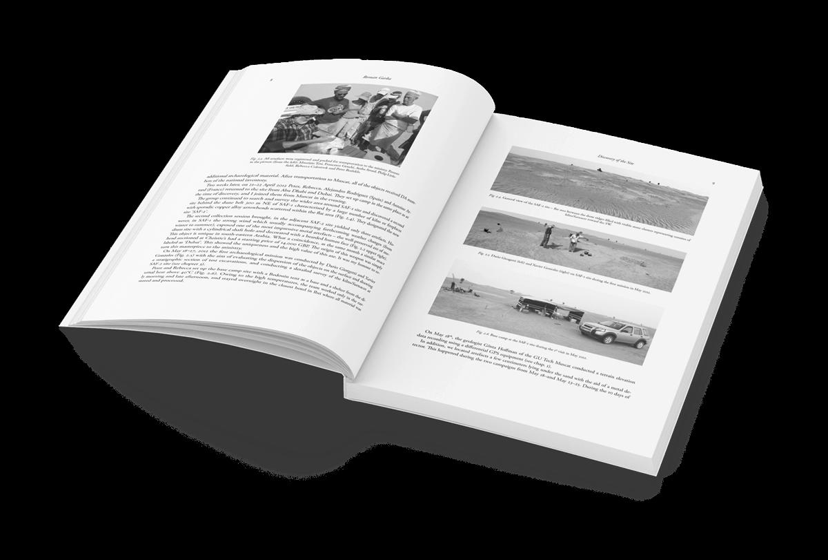 Buchgestaltung Referenz Universitätsforschungen innen mit Bilder
